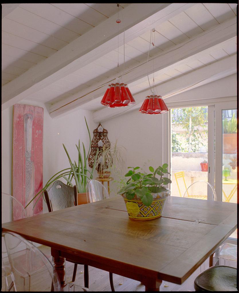 kitchen, crowding, Campari, light design, plants, dining