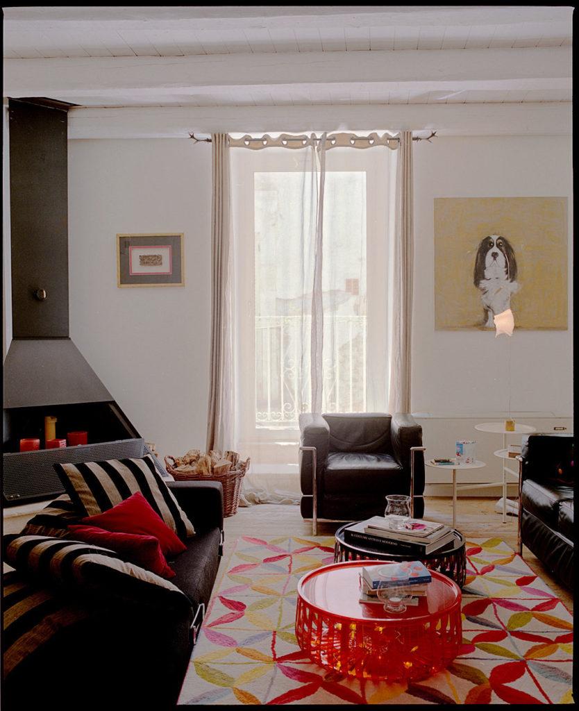 living room, soggiorno, dog, rug, rustic